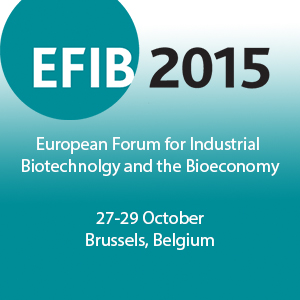 EFIB2015_300x300_Banner