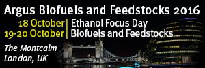 Biofuels International 300 x 100