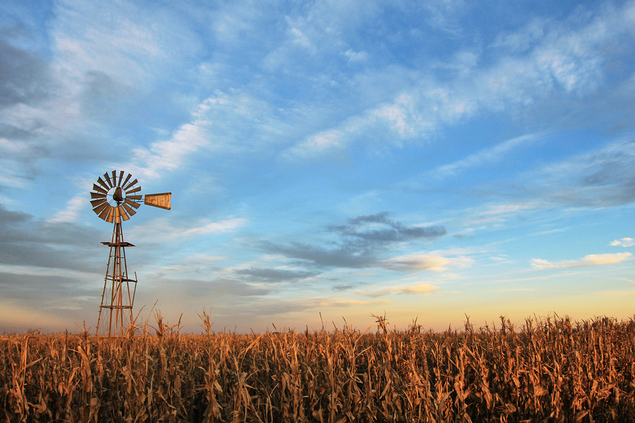 Rural American businesses have been badly hit by the cirus
