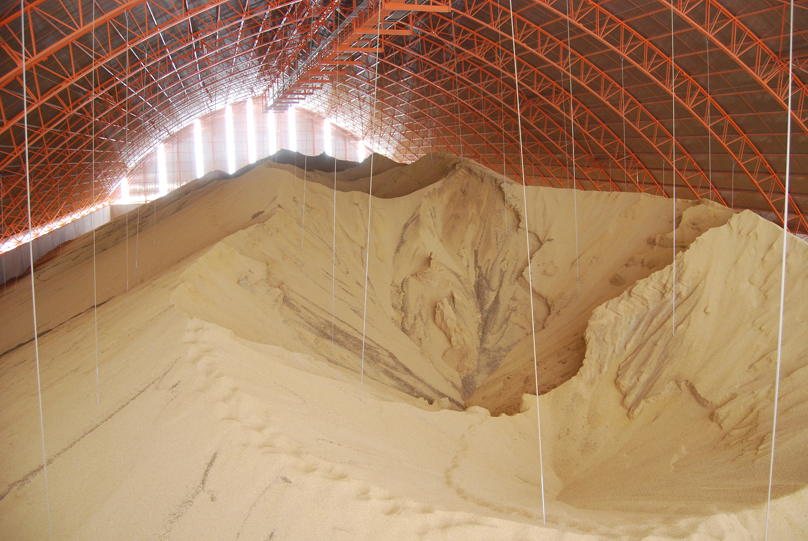 Storage facility for soy beans